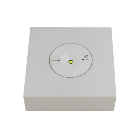 emergency_downlight_surface_mount_2